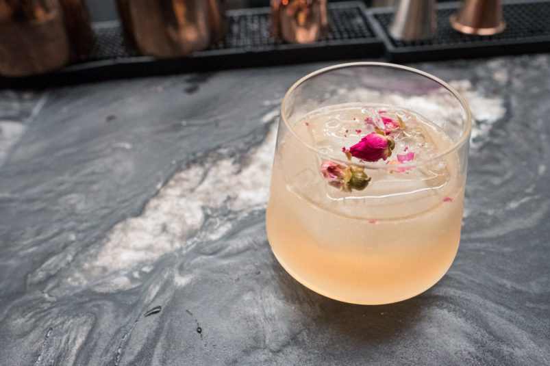 planta-cocktails01
