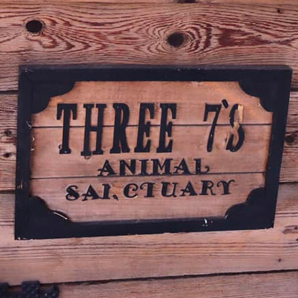 Three 7's Animal Sanctuary