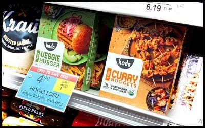 Minh Tsai: Hodo Foods CEO | SoFlo Vegans Podcast